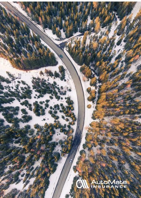 Motorfahrzeugversicherung