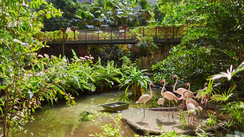 Tropical Islands Resort - Mal kurz im Urlaub und 15% sparen